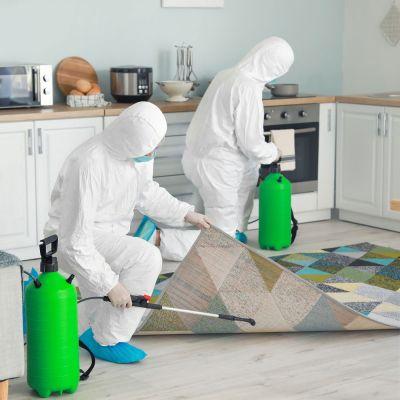 Απολύμανση για κορονοϊό covid-19 ιούς και μικρόβια. Απαλλάξτε τον χώρο που κατοικείτε από μικρόβια και ιούς! - skroutz.com.cy