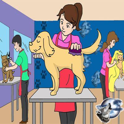 lycoriana pet shop nicosia skroutz pet grooming cyprus - Dog Grooming Nicosia - skroutz.com.cy