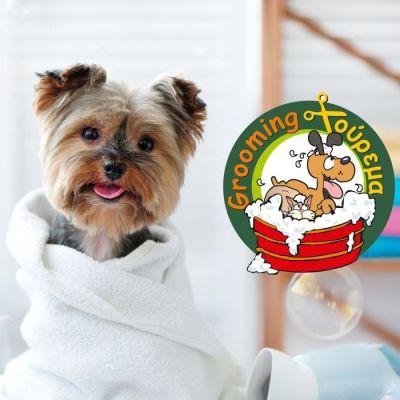 Καλλωπισμός του Αγαπημένου σας Σκύλου στο SuperPets + 20% Έκπτωση σε όλες τις τροφές κατοικίδιων! - skroutz.com.cy