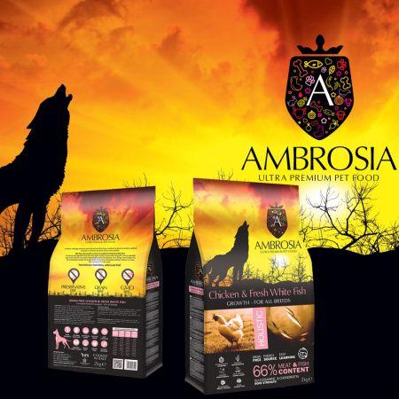 2 Kg Τροφή για Σκύλους της Ελληνικής Εταιρείας AMBROSIA - skroutz.com.cy