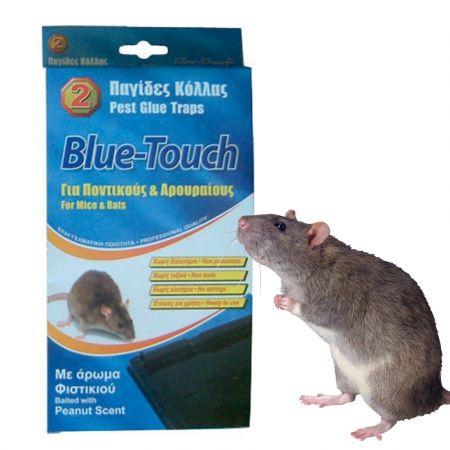 Παγίδες Κόλλας Για Ποντικούς & Αρουραίους x 2 - skroutz.com.cy