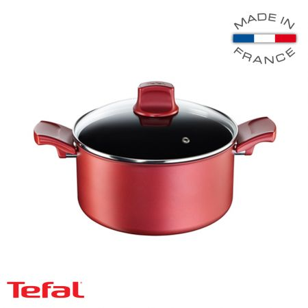 Tefal Character Stewpot 20 cm - skroutz.com.cy