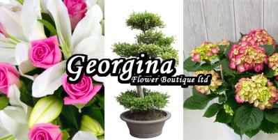 Georgina Flower Boutique ltd | Show your feelings with a flower!!