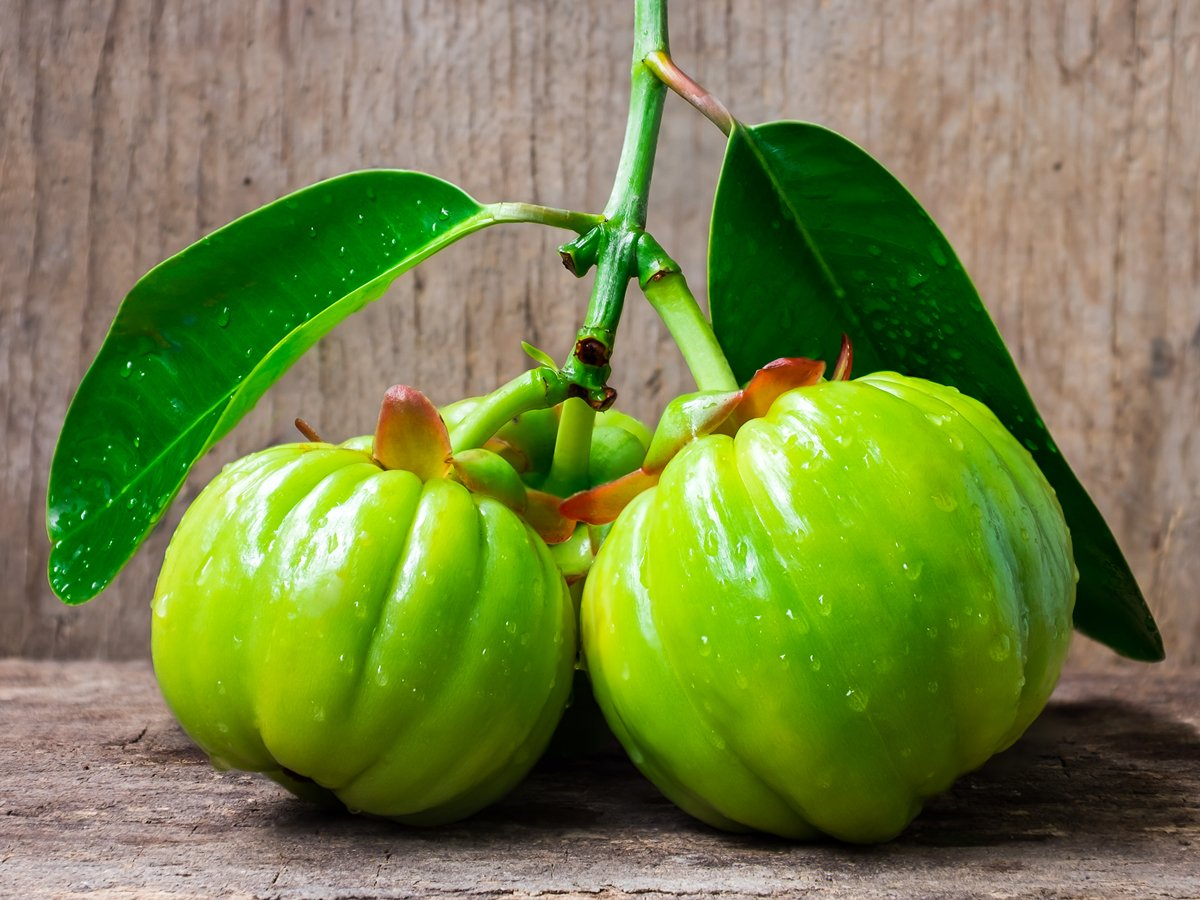 garcinia cambogia fruit benefits - skroutz.com.cy