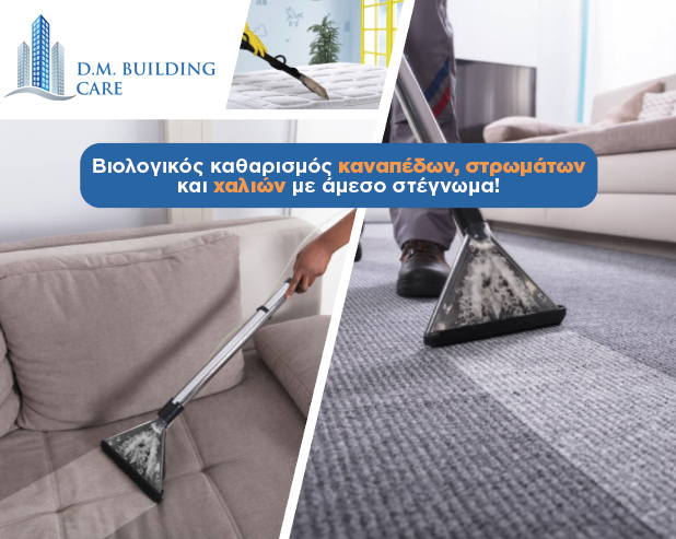 mattress cleaning cyprus - dm building care